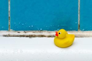 schwarzschimmel-im-bad