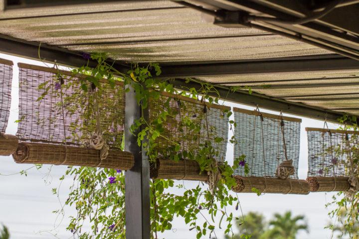 sonnenschutzrollo-fuer-balkon