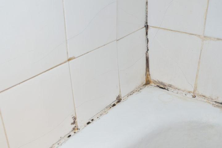 stockflecken-dusche-entfernen