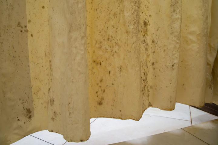 stockflecken-duschvorhang