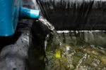 teichfilter-selbst-gebaut-bauanleitung-sauberes-klares-wasser-keine-algen