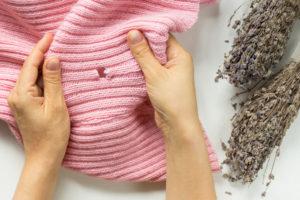 textilmotten-bekaempfen