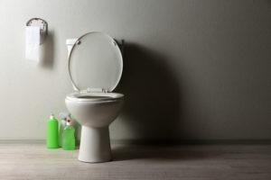 toilette-mit-spuelmittel-reinigen