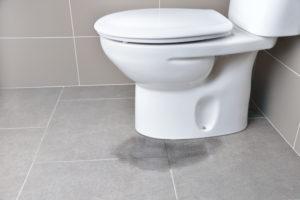 toilette-undicht-mieter-oder-vermieter