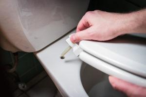 toilettenbrille-entsorgen