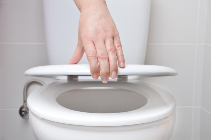 toilettendeckel-absenkautomatik-reparieren