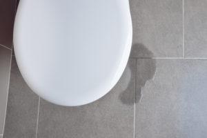 toilettendichtung-undicht