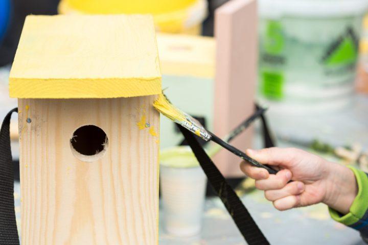 vogelhaus-bemalen