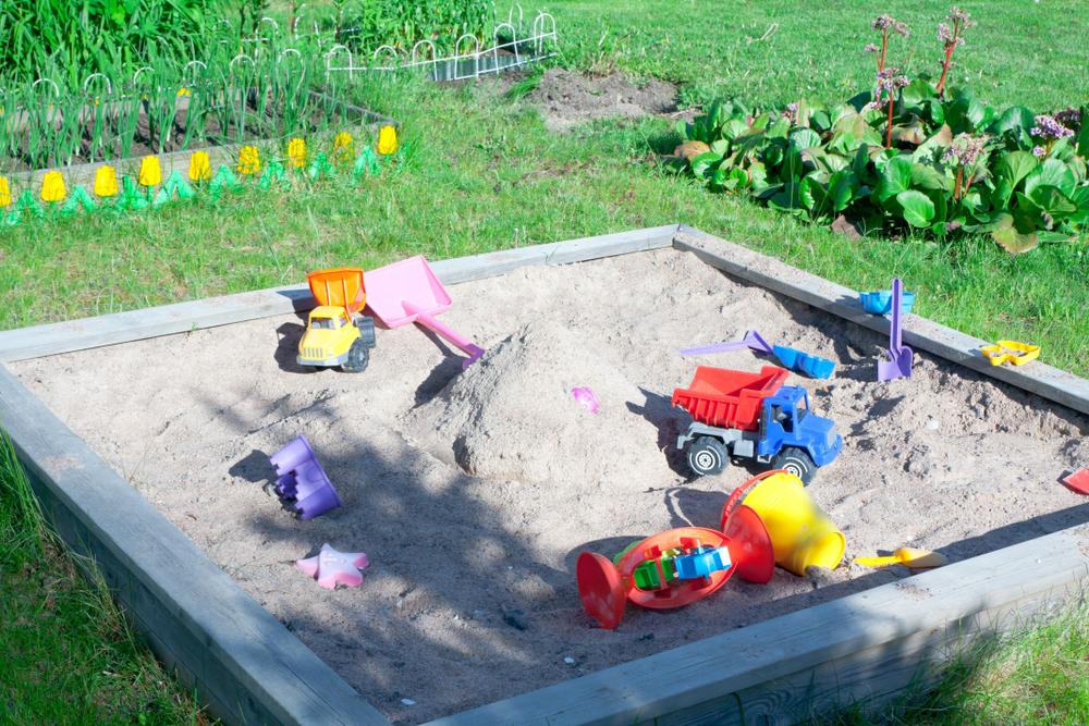 Sandmuschel Wieviel Sand