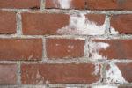 ziegelmauerwerk-sanieren